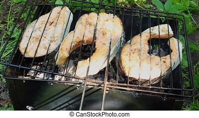 Cooking fish on grill at sunny day