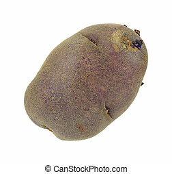 Gourmet purple potato - A single gourmet purple potato on a...