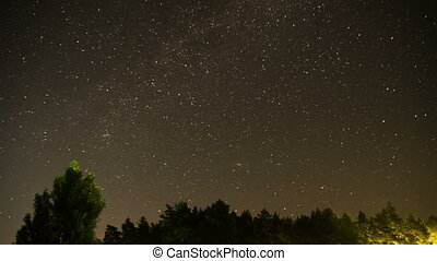 Moving Stars in Night Sky over Trees. Time Lapse. Starry sky...