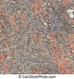 Seamless texture - rock with lichen - Seamless texture - the...