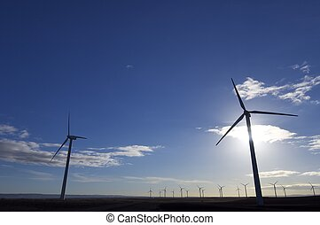 wind energy - backlight in a field of windmills for electric...