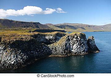 Iceland - Snaefellsnes - Basalt rocks in Arnarstapi,...