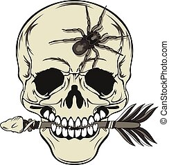 Skull with Arrow and Spider - Vector of human skull with...