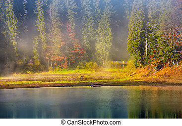 morning fog on the lake in spruce forest. gorgeous...