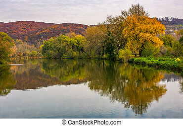 river in mountains among the forest in autumn - autumn...