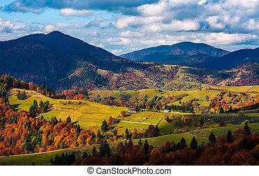 magnificent mountainous landscape in autumn. coniferous and...