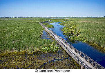 Boardwalk along Point Pelee provincial park during the...