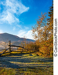 wooden fence near forest in mountains - wooden fence near...