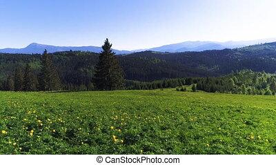 Mountain village landscape