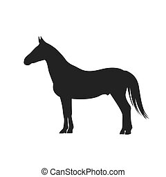 horse, icon, vector illustration