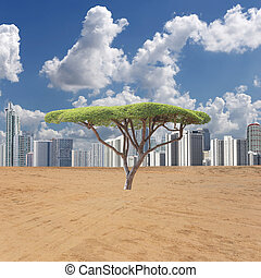 Fresh green tree and city view and empty area on day time. -...