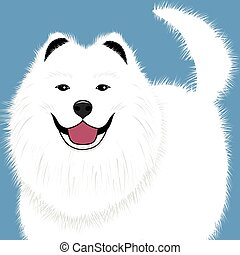 Dog samoyed, buddy puppy vector