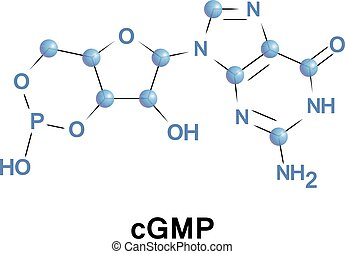 Cyclic guanosine monophosphate is a cyclic nucleotide...