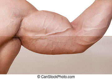 Professional Skin retouched biceps on bodybuilder hand....