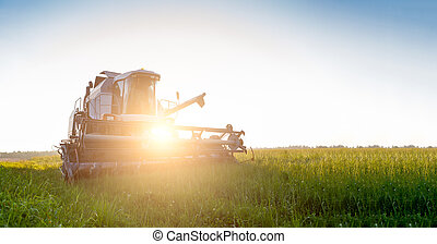 Image of combine harvester in field during day. Sunflare...
