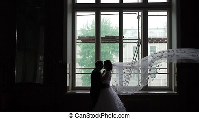 Lovely couple silhouette - Lovely couple hugging silhouette...