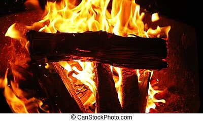 Campfire flames closeup - Burning fire in a camp, slow...