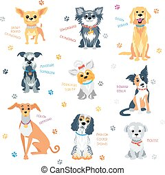 Set colour dogs - Vector set colour dogs of different breeds
