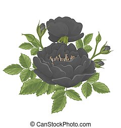 English rose graphic flowers. - English rose graphic flowers...
