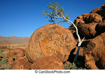 Tree and granite rocks - Desert landscape with a tree,...