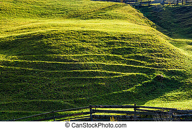 beautiful grassy hillside in sunlight. lovely agricultural...