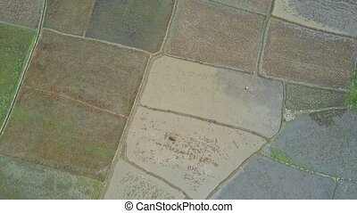 High Aerial View on Boundless Rural Landscape - High aerial...