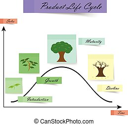 Product Life Cycle As Sticky Notes on White Background