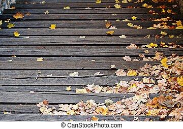 automne, feuilles, escalier