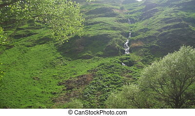 Landscape View of the Mountain Stream or the Waterfall in...