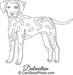 Dalmatian dog outline vector illustration
