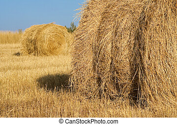Haystacks in field - Haystacks in a field photographed in...
