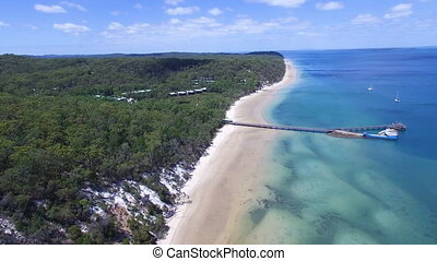 Ocean and shoreline with forest trees aerial shot