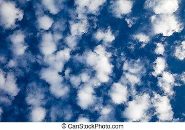 Altocumulus Clouds - A cloudscape of puffy white altocumulus...