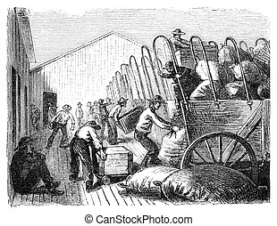 Loading Wagons - Men loading covered wagons Illustration...