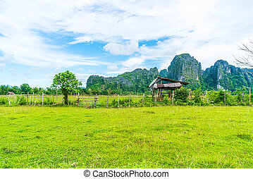 Old house in the fields at Vang Vieng
