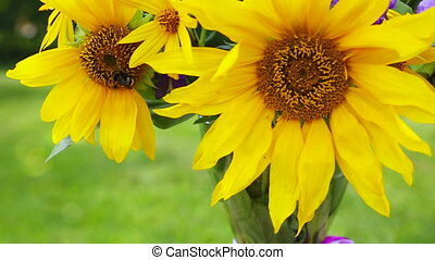 A bouquet of yellow sunflowers and bee. - A bouquet of...
