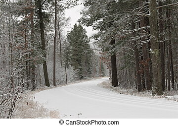 A snowy northern Wisconsin road the morning after a storm in...