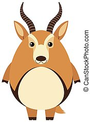 Cute gazelle with round body illustration