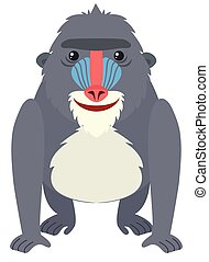Baboon with happy face illustration
