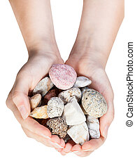 top view of various natural pebbles in handful