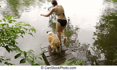 Collie dog with young girl jump into the river - Collie dog...