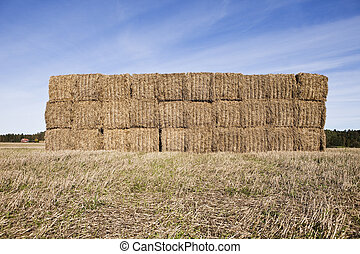 Bale of Haystack on a sunny day