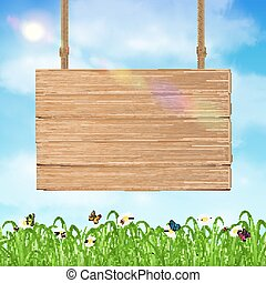 hang wood board sign with grass and sky background