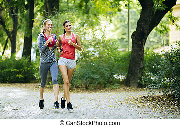 Athletic women jogging in nature - Athletic women exercising...