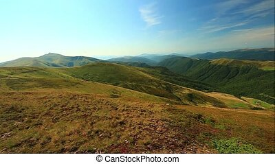 mountains Carpathians Ukraine, Dragobrat - landscape in...
