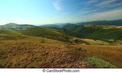 mountains Carpathians Ukraine, Dragobrat - landscape in...