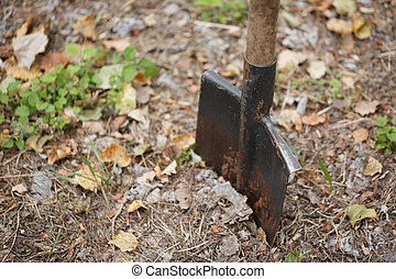 A close-up of a metal shovel dug into the ground. A shovel on a ground background. Nature, ecology concept. Copy space.