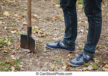 Man plants a tree, a young male with a shovel digs the ground. Nature, environment and ecology concept.