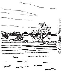Landscape sketch. Tree and fields - Landscape sketch. Hand...