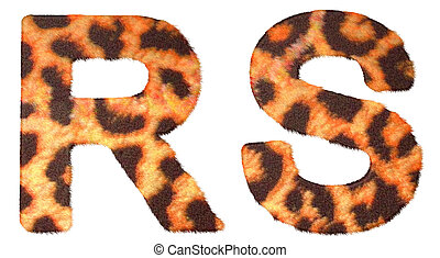 Leopard fur R and S letters isolated over white background